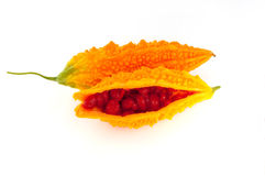 在白色或黄色苦瓜属隔绝的苦涩瓜 免版税图库摄影