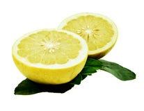 在白色或黄色葡萄柚隔绝的柚 库存图片