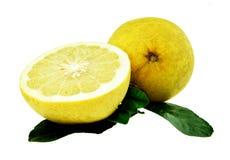 在白色或黄色葡萄柚隔绝的柚 免版税库存照片