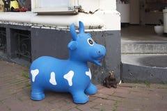 在白色斑点母牛和青蛙的蓝色橡胶与在入口的一个金黄冠对商店 图库摄影