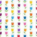 在白色无缝的样式的五颜六色的郁金香 向量例证