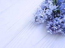 在白色木制框架背景的美丽的淡紫色花束群植物学构成4月开花葡萄酒 免版税库存图片