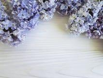 在白色木制框架背景的美丽的淡紫色花束设计植物学构成4月开花葡萄酒 免版税库存照片
