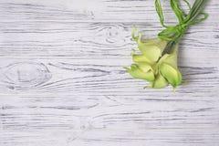 在白色木桌上的绿色水芋百合 图库摄影