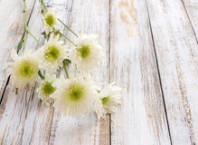 在白色木桌上的花 免版税库存图片