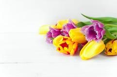在白色木桌上的郁金香 库存照片