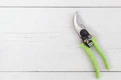 在白色木的新的绿色剪枝夹 顶视图 库存照片