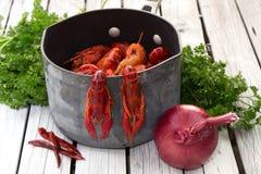 在白色木背景的新鲜的蒸的小龙虾 土气样式 杂志的盖子 海鲜菜单 免版税图库摄影