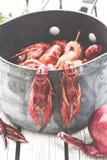 在白色木背景的新鲜的蒸的小龙虾 土气样式 杂志的盖子 海鲜菜单 库存图片
