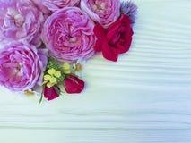 在白色木背景的玫瑰美好的花束雏菊生日边界季节框架 免版税库存图片