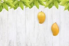 在白色木背景的芒果果子 免版税库存图片