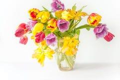 在白色木头的郁金香花束 库存照片