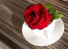 在白色杯子的红色玫瑰在桌上 免版税库存照片
