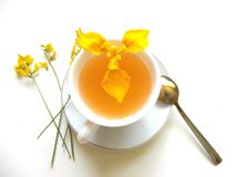 在白色杯的茶有黄色花和手的 免版税图库摄影