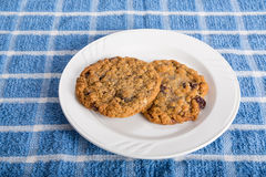 在白色板材的两燕麦粥葡萄干曲奇饼 免版税库存图片