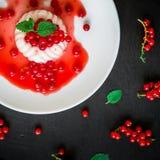 在白色板材的可口潘纳陶砖在一张黑暗的桌和无核小葡萄干莓果上 传统意大利点心 免版税图库摄影
