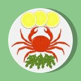 在白色板材的大红色螃蟹有柠檬切片和草本的 传染媒介平的例证 库存图片