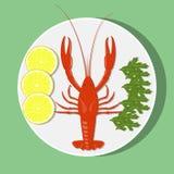 在白色板材的大红色龙虾有柠檬切片和草本的 传染媒介平的例证 免版税库存照片