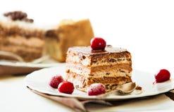 在白色板材的巧克力蛋糕用冷冻酒樱桃 库存图片
