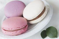 在白色板材的桃红色,白色和紫罗兰色蛋白杏仁饼干特写镜头,反弹绿色瓣,嫩淡色背景 软绵绵地集中 免版税库存图片
