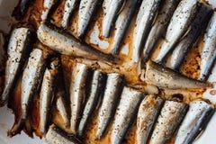 在白色板材的烤波儿地克的鲱鱼 库存照片