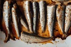 在白色板材的烤波儿地克的鲱鱼 免版税图库摄影