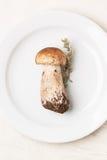 在白色板材的等概率圆蘑菇 免版税库存图片