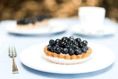 在白色板材的蓝草莓饼馅饼 免版税库存图片
