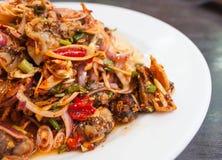 在白色板材,泰国海鲜的辣鸟蛤沙拉 免版税库存照片