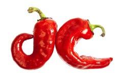 在白色查出的二个小的红辣椒 库存照片