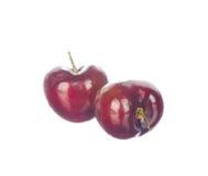 在白色查出的二棵樱桃 免版税库存图片