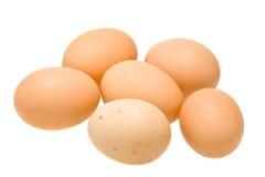 在白色查出的六个有机鸡蛋 免版税库存照片