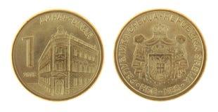 在白色查出的塞尔维亚人硬币 免版税图库摄影