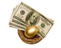 在白色查出的嵌套的金黄鸡蛋和货币 库存图片