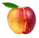 在白色查出的桃子 免版税库存照片