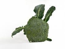 在白色查出的硬花甘蓝蔬菜 库存图片