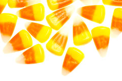 在白色查出的糖味玉米 库存图片