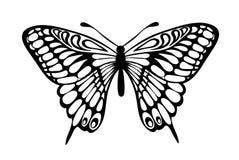 在白色查出的美丽的黑白蝴蝶 免版税库存照片