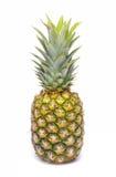 在白色查出的菠萝 库存图片