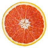 在白色查出的葡萄柚 库存图片