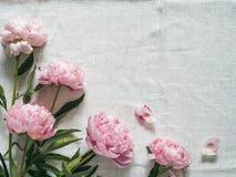 在白色桌布的牡丹花束 库存照片