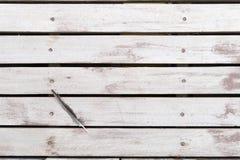 在白色棕色土气木地板上的鸟羽毛 背景舱内甲板位置 免版税图库摄影