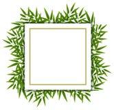 在白色模板的竹叶子 向量例证