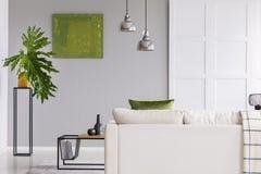 在白色沙发上的灯在简单的客厅内部与绿色绘画和植物在桌 实际照片 图库摄影