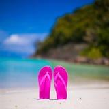 在白色沙子的桃红色充满活力的海滩触发器在海 免版税库存图片