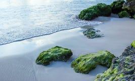 在白色沙子的生苔岩石在海滩在Oistins巴巴多斯 库存照片