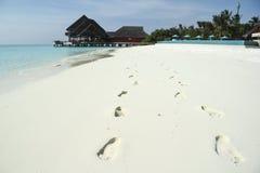 在白色沙子马尔代夫海滩的脚印 免版税图库摄影