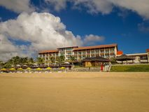 在白色沙滩的可可椰子树在波尔图de加利尼亚斯岛,伯南布哥,巴西 图库摄影