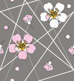 在白色海峡线的樱桃花 向量例证