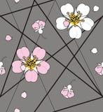 在白色海峡线的樱桃花 皇族释放例证